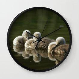 MUTE SWAN CYGNET TRIO Wall Clock