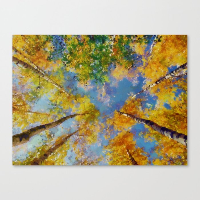 Fall trees in the sky Canvas Print