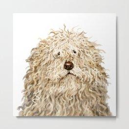 Cute Puli Dog Metal Print