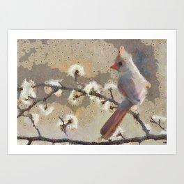 Abstract Colorful Wild Bird Cardinal Painting Art Print