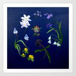 Transient - winter blooms Art Print