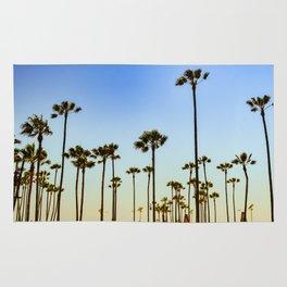 Venice beach CA. Rug