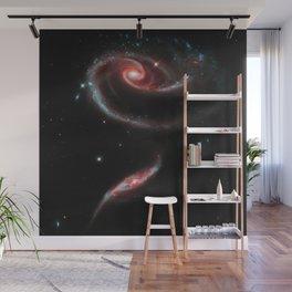 Rose of Galaxies Wall Mural