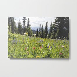 Sub-alpine Meadow Metal Print