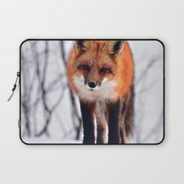 Small Friend || Laptop Sleeve