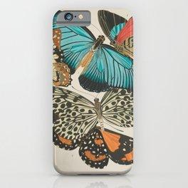 E.A.Séguy - Papillons / Butterflies (1925) Plate 11 iPhone Case