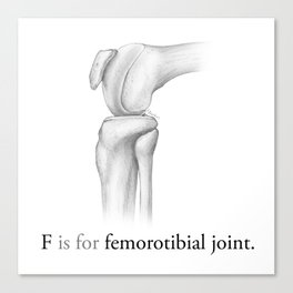 F is for femorotibial joint Canvas Print