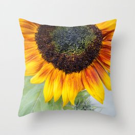 Like a mother and child Throw Pillow