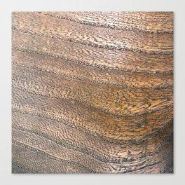 Warm Waved Wood Canvas Print