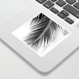 Palm Leaves Black & White Vibes #5 #tropical #decor #art #society6 Sticker