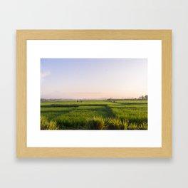 Bali Framed Art Print