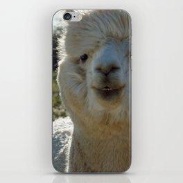 Smiling Llama iPhone Skin