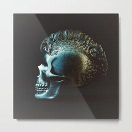 20160423 | HAIRY STUFFS Metal Print