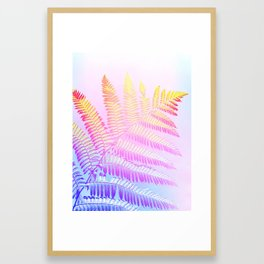 Hello Candy Fern! #foliage #homedecor #lifestyle Framed Art Print