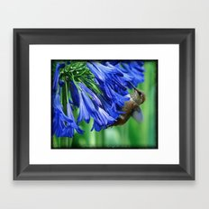 Just Hangin' Out Framed Art Print