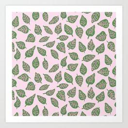 Fittonia Leaves Art Print