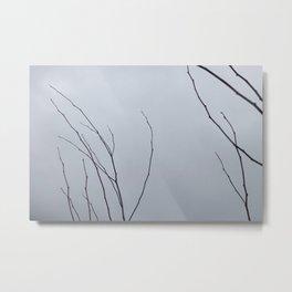stripped Metal Print
