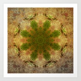 Green Flower Fossil Art Print