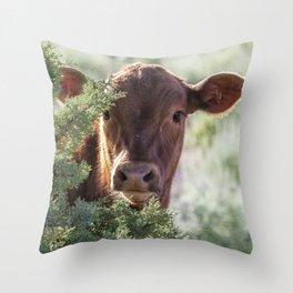 Shy Calf Throw Pillow