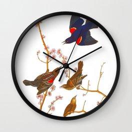 Red winged Starling, or Marsh Blackbird Wall Clock