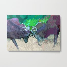 Rutting Deer Metal Print