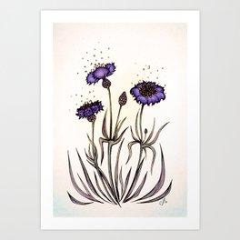 Mystery Garden: Violet cornflower in a pearl midday haze Art Print