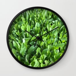 Sprung Wall Clock