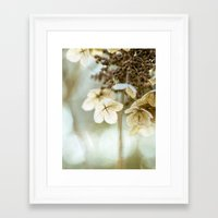 hydrangea Framed Art Prints featuring hydrangea by Bonnie Jakobsen-Martin