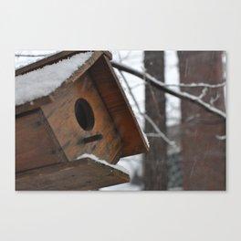 Winter Birdhouse  Canvas Print