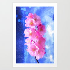 Japanese ornamental cherry Art Print