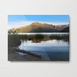 Lake Crescent I Metal Print