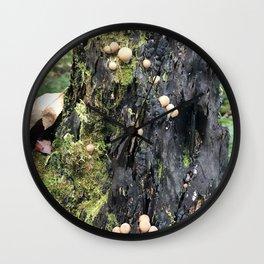 Trail of Puffballs Wall Clock