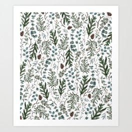 Pine and Eucalyptus Greenery Art Print
