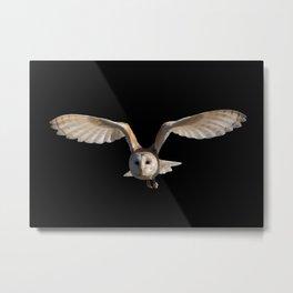 owl gift  Metal Print