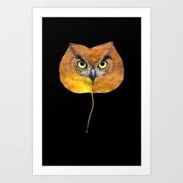 Autumn Owl-4 Art Print