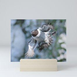 Don't Ruffle My Feathers Mini Art Print