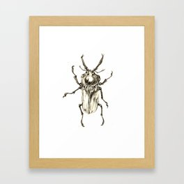 Beetle2 Framed Art Print