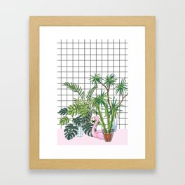 room plants Framed Art Print
