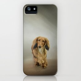 It's Showtime Baby - Dachshund iPhone Case