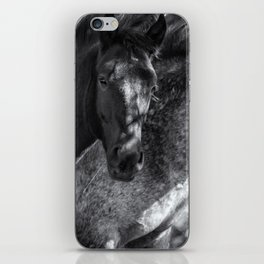 Mica and Malpais BW - Pryor Mustangs iPhone Skin