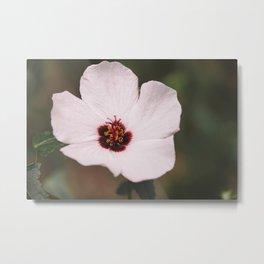 Floral 23 #flower Metal Print