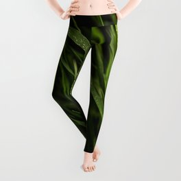 Fresh Grass Leggings