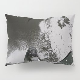 Aphrodesia Erotic Pillow Sham