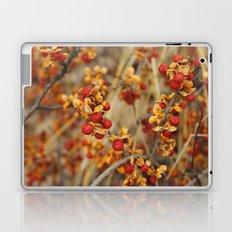 Fall's End Laptop & iPad Skin