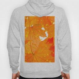 Fall Orange Maple Leaves On A White Background #decor #buyart #society6 Hoody