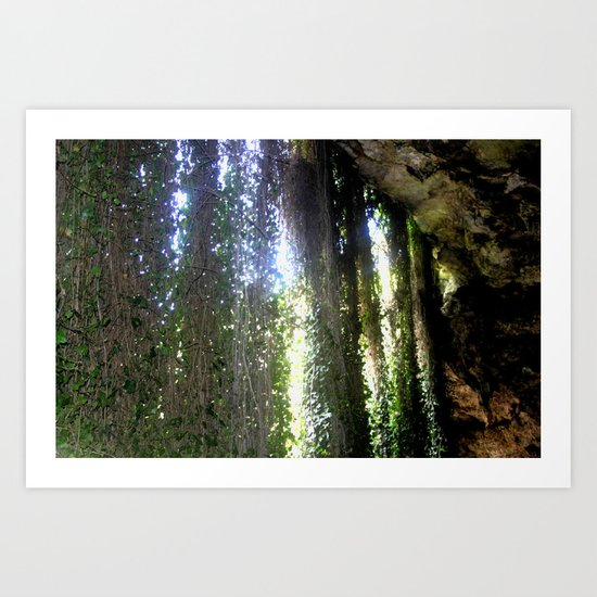 Inside, looking out from a cave in the Umpherston Sinkhole Art Print