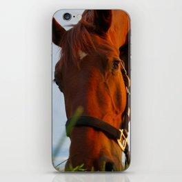 Good Grass iPhone Skin