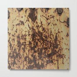 Rusty iron Metal Print