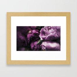 Peonies for Brenna Framed Art Print