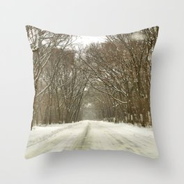 Snowy Path At Point Pele Throw Pillow